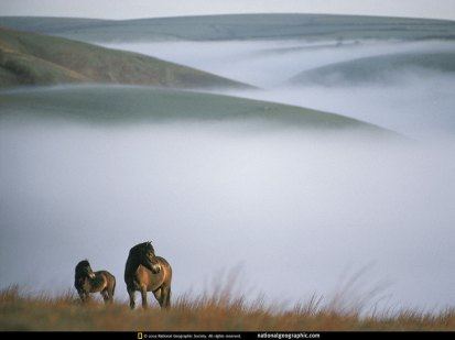 national-geographic-wallpapers-041.jpg